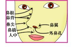 隆鼻術の材料は、どこに入れるか?